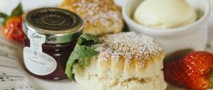 Hitchin Priory Scones and Cream